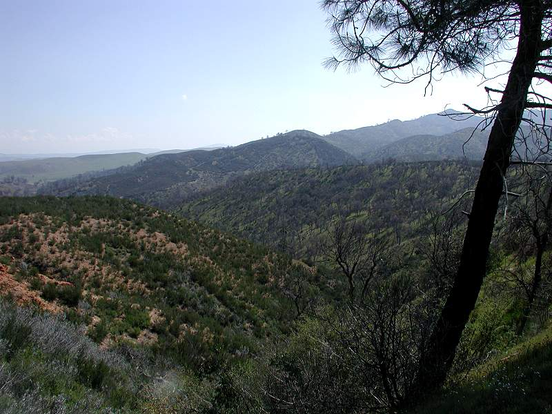 photo_Navajo_Flats-14_800x600